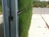 (8) Founex (VD), mai 2012 - Développement de la végétation