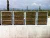 (6) Founex (VD),  mars 2013 -  Gazon du VG Biobed en cours de reprise
