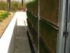 (7) Founex (VD),  mars 2013 -  Gazon du VG Biobed en cours de reprise